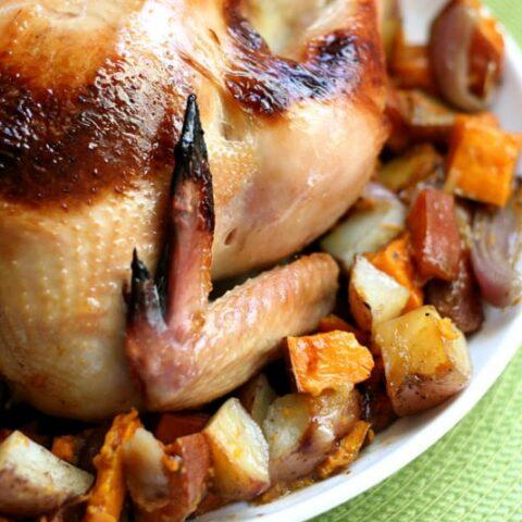 Chicken & Turkey Brine + The Perfect Bird