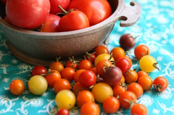 What to do with 30 pounds of tomatoes | canning recipes | salsa recipe | tomato soup recipes | perrysplate.com