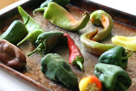 Roasted Chiles Rellenos Bake | gluten free recipes | tex-mex recipes | recipes with chiles | brunch recipes | breakfast recipes | perrysplate.com