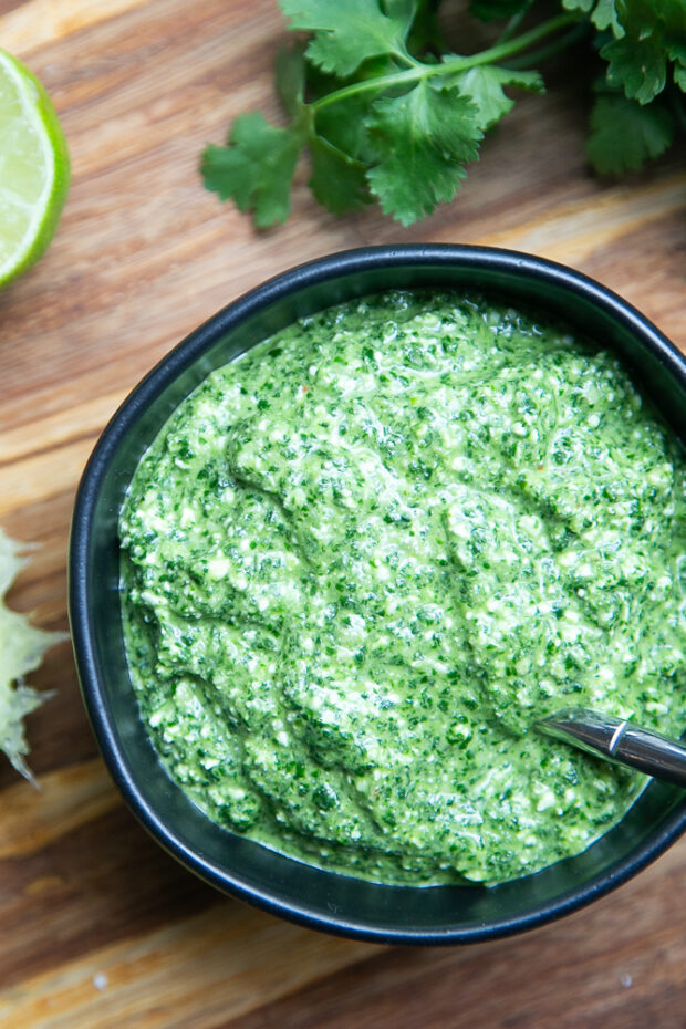 Homemade Cilantro Pesto is a great alternative to traditional pesto! It's easy to make dairy-free, too.